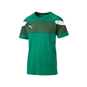 puma-spirit-2-leisure-t-shirt-kurzarmshirt-teamsport-men-herren-gruen-weiss-f05-654659.png