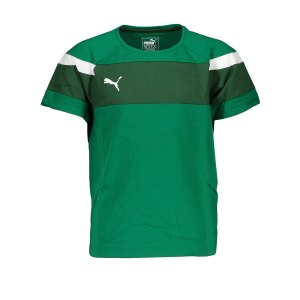 puma-spirit-ii-leisure-t-shirt-gruen-weiss-f05-fussball-teamsport-textil-t-shirts-654659.png