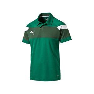 puma-spirit-2-poloshirt-kurzarmshirt-polo-teamsport-vereine-men-herren-gruen-f05-654660.jpg
