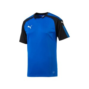 puma-ascension-trainingsshirt-blau-schwarz-f02-sportbekleidung-herren-men-maenner-shortsleeve-kurzarm-654917.png