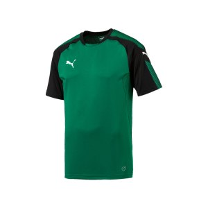 puma-ascension-trainingsshirt-gruen-schwarz-f05-sportbekleidung-herren-men-maenner-shortsleeve-kurzarm-654917.jpg