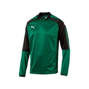 puma-ascension-training-sweatshirt-gruen-f05-sportbekleidung-herren-men-maenner-longsleeve-langarmshirt-654918.jpg