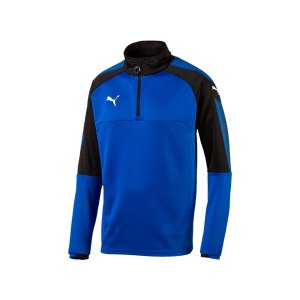 puma-ascension-1-4-zip-top-training-blau-f02-sportbekleidung-teamsport-herren-men-maenner-sweatshirt-654920.jpg