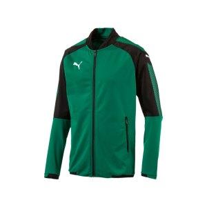 puma-ascension-stadium-jacket-gruen-schwarz-f05-jacke-sportbekleidung-fussball-training-ausruestung-654923.jpg