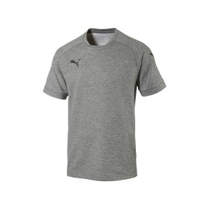 puma-ascension-tee-t-shirt-grau-f61-sportbekleidung-herren-men-maenner-shortsleeve-kurarm-shirt-654924.jpg