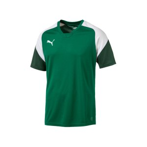 puma-esito-4-trainingsshirt-f05-fussball-training-shirt-sport-team-mannschaft-kids-655221.png
