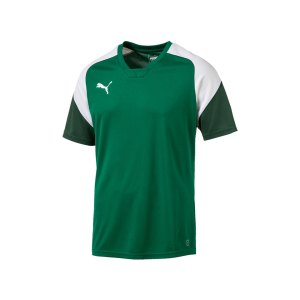 puma-esito-4-trainingsshirt-gruen-weiss-f05-training-sport-fussball-teamsport-trikot-655221.jpg