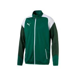 puma-esito-4-polyesterjacke-gruen-weiss-f05-teamsport-herren-men-maenner-jacket-jacke-655223.png
