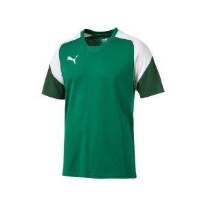 puma-esito-4-tee-t-shirt-kids-f05-fussball-soccer-mannschaft-ausstattung-teamsport-655226.png