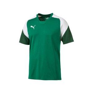 puma-esito-4-tee-t-shirt-gruen-weiss-f05-teamsport-herren-men-maenner-shortsleeve-kurzarm-shirt-655226.png