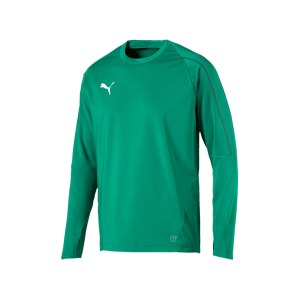 puma-final-training-sweathsirt-f05-teamsport-mannschaft-match-ausruestung-655290.png