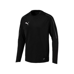 puma-final-training-sweathsirt-f03-teamsport-mannschaft-match-ausruestung-655290.png