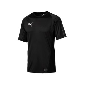 puma-final-training-trikot-kurzarm-f03-teamsport-mannschaft-match-ausruesrung-655292.png