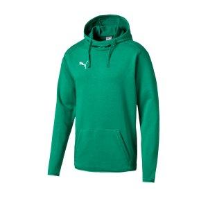puma-liga-casuals-hoody-gruen-weiss-f05-trainingskleidung-teamsportequipment-vereinsausstattung-fussballbedarf-655307.jpg