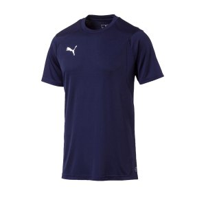 puma-liga-training-t-shirt-blau-f06-shirt-team-mannschaftssport-ballsportart-training-workout-655308.png