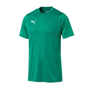 puma-liga-training-t-shirt-gruen-f05-shirt-team-mannschaftssport-ballsportart-training-workout-655308.png