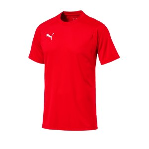 puma-liga-training-t-shirt-rot-weiss-f01-shirt-team-mannschaftssport-ballsportart-training-workout-655308.png