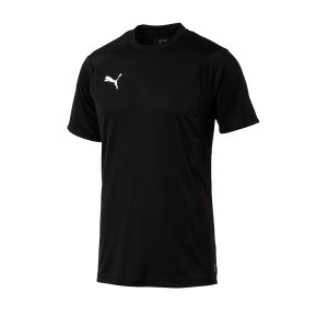 puma-liga-training-t-shirt-schwarz-f03-shirt-team-mannschaftssport-ballsportart-training-workout-655308.png
