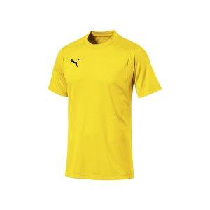 puma-liga-casuals-tee-t-shirt-f07-fussball-spieler-teamsport-mannschaft-verein-655311.png