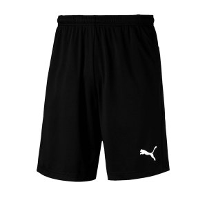 puma-liga-training-short-schwarz-weiss-f03-shrt-kurze-team-mannschaftssport-ballsportart-training-workout-655316.png