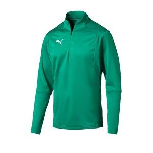puma-liga-training-1-4-zip-top-sweatshirt-gruen-f05-sweatshirt-oberteil-langarm-mannschaftssport-ballsportart-fussball-655606.jpg