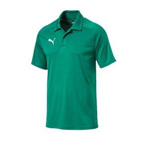 puma-liga-sideline-poloshirt-f05-fussball-spieler-teamsport-mannschaft-verein-655608.png