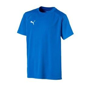 puma-liga-training-t-shirt-kids-blau-weiss-f02-teamsport-textilien-sport-mannschaft-freizeit-655631.png