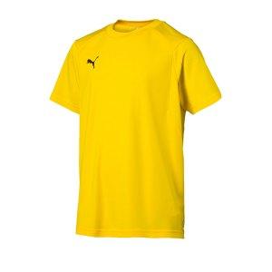 puma-liga-training-t-shirt-kids-f07-teamsport-textilien-sport-mannschaft-freizeit-655631.jpg