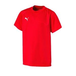 puma-liga-training-t-shirt-kids-rot-weiss-f01-teamsport-textilien-sport-mannschaft-freizeit-655631.jpg