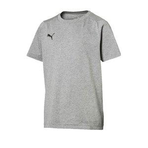 puma-liga-casuals-tee-t-shirt-kids-grau-f33-655634-fussball-teamsport-textil-t-shirts.png