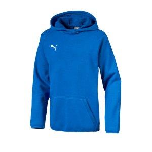 puma-liga-casuals-kapuzensweatshirt-kids-blau-f02-teamsport-textilien-sport-mannschaft-655636.jpg