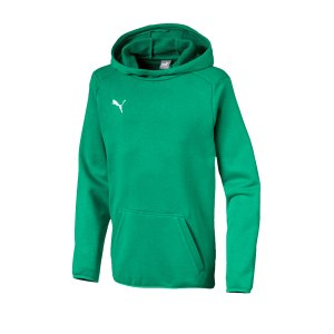 puma-liga-casuals-kapuzensweatshirt-kids-f05-fussball-spieler-teamsport-mannschaft-verein-655636.jpg