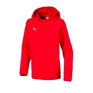 puma-liga-casuals-kapuzensweatshirt-kids-rot-f01-teamsport-textilien-sport-mannschaft-655636.png