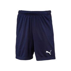 puma-liga-training-short-kids-blau-weiss-f06-fussball-spieler-teamsport-mannschaft-verein-655641.png