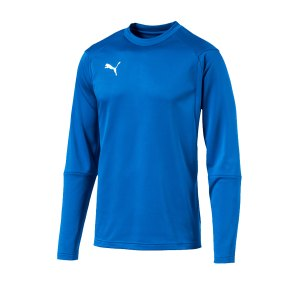 puma-liga-training-sweatshirt-blau-f02-teampsort-mannschaft-ausruestung-655669.jpg