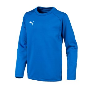 puma-liga-training-sweatshirt-kids-blau-f02-teampsort-mannschaft-ausruestung-655670.png
