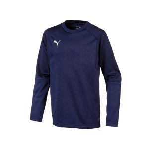 puma-liga-training-sweatshirt-kids-blau-f06-teampsort-mannschaft-ausruestung-655670.png