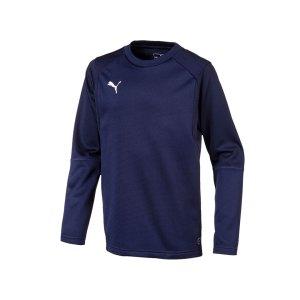 puma-liga-training-sweatshirt-kids-blau-f06-teampsort-mannschaft-ausruestung-655670.jpg
