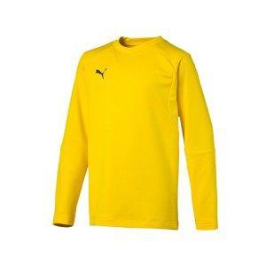 puma-liga-training-sweatshirt-kids-gelb-f07-teampsort-mannschaft-ausruestung-655670.png