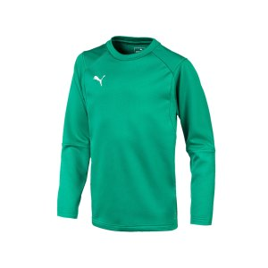 puma-liga-training-sweatshirt-kids-gruen-f05-teampsort-mannschaft-ausruestung-655670.png