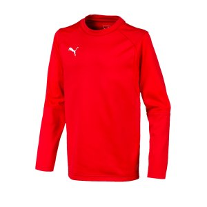 puma-liga-training-sweatshirt-kids-rot-f01-teampsort-mannschaft-ausruestung-655670.png