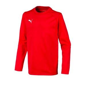puma-liga-training-sweatshirt-kids-rot-f01-teampsort-mannschaft-ausruestung-655670.jpg