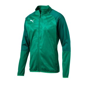 puma-cup-training-poly-jacket-core-gruen-f05-fussball-sport-mannschaft-spass-verein-656014.png