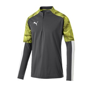 puma-cup-training-1-4-zip-top-grau-f16-fussball-teamsport-textil-sweatshirts-656016.png