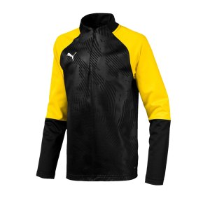 puma-cup-training-core-1-4-zip-top-kids-f18-fussball-teamsport-textil-sweatshirts-656019.png