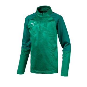 puma-cup-training-core-1-4-zip-top-kids-gruen-f05-fussball-teamsport-textil-sweatshirts-656019.png