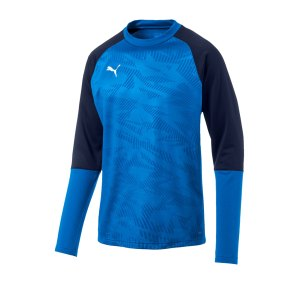 puma-cup-training-core-sweatshirt-blau-f02-fussball-teamsport-textil-sweatshirts-656021.jpg