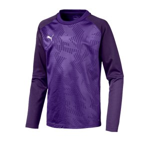 puma-cup-training-core-sweatshirt-kids-lila-f10-fussball-teamsport-textil-sweatshirts-656022.jpg