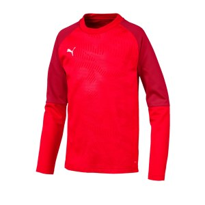 puma-cup-training-core-sweatshirt-kids-rot-f01-fussball-teamsport-textil-sweatshirts-656022.png