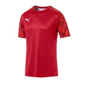 puma-cup-training-t-shirt-rot-f01-fussball-teamsport-textil-t-shirts-656023.png